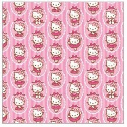 Hello Kitty Folded Wrap Ballerina Frames 700x495mm